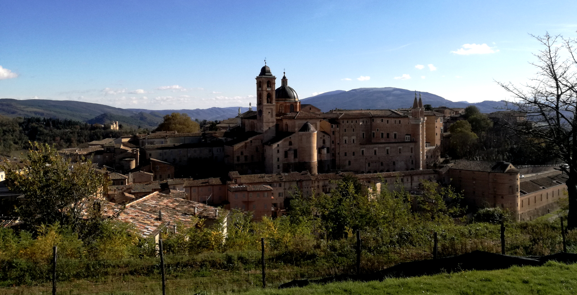 Visita guidata di Urbino