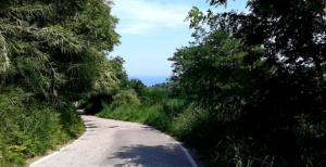 Storia della Strada Panoramica