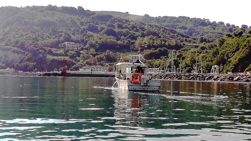 Escursione in barca in Parco San Bartolo