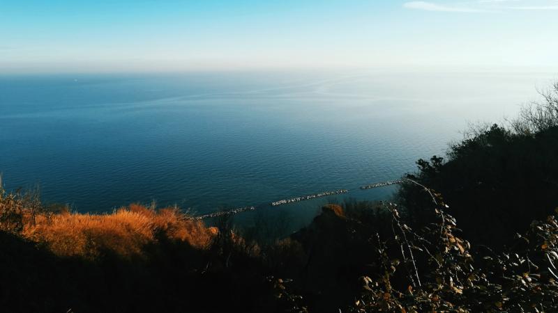 Parco San Bartolo